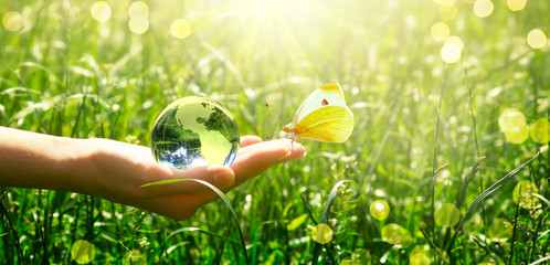 Earth glass globe and butterfly in human hand on green grass background. Saving environment concept.