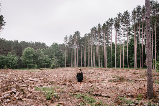 Woman Walking in Forest Clearcutting