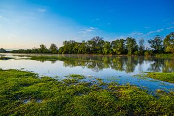 Fotobehang Pistache Sunrise near the river