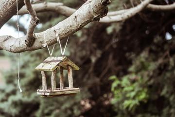 Mangeoire en bois pour petits oiseaux accrochée à un arbre Wall mural
