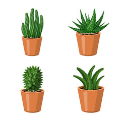 Vector illustration of cactus and pot icon. Collection of cactus and cacti stock vector illustration.