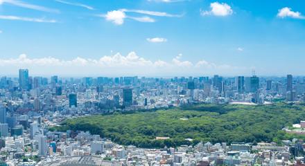 東京風景 夏