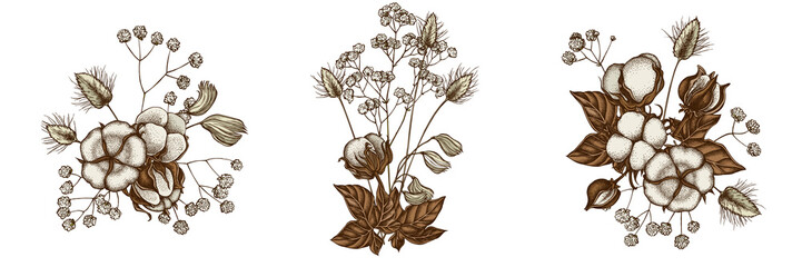 Flower bouquet of colored lagurus, cotton, gypsophila