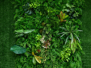 Wall Murals Plant artificial green plant wall