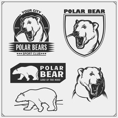 Labels, emblems and design elements for sport club with polar bear. Print design for t-shirt.