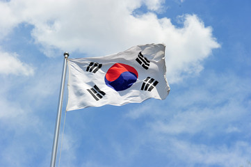 Flutter South Korea National Flag Wall mural