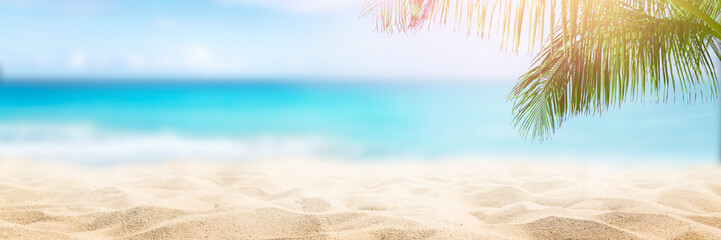Spoed Fotobehang Strand Sunny tropical Caribbean beach with palm trees and turquoise water, caribbean island vacation, hot summer day