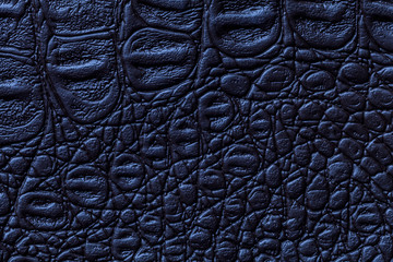 Navy blue leather texture background, closeup. Reptile skin, macro. Wall mural