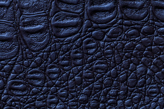 Navy blue leather texture background, closeup. Reptile skin, macro.
