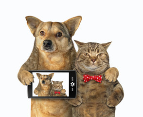 The dog with a smartphone and cat in a red bow tie made selfie together. White background. Isolated.