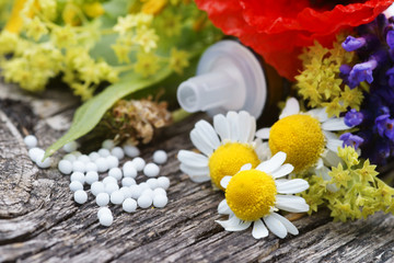 homeopathic globule with medicinal herbs, copy space