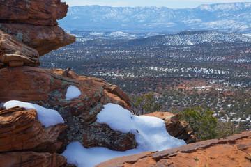 Rock Squirrel Overlooks the Valley Below, Sedona, Arizona, USA