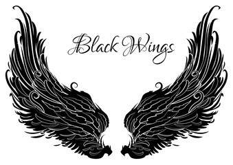 Black and white decorative wings. Angel  wings. Tattoo template. Vector illustration.