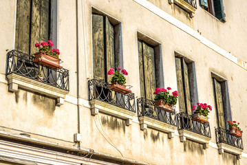 Fototapete - Old house with flowers, Venice, Italy. Windows of residential building or hotel with vintage shutters. Antique wall and wooden shutters close-up.