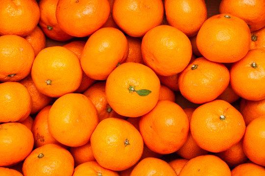 A pile of organic fresh juicy mandarin oranges