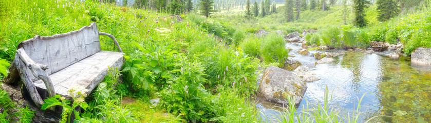 In de dag Olijf empty bench have mountain creek
