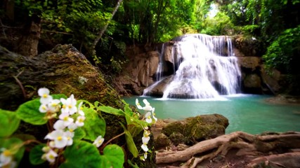 Wall Mural - Locked down, rack focus, Waterfall flow standing with forest enviroment and Angel Wing Begonia flower in thailand, called Huay or Huai mae khamin in Kanchanaburi province, Lockdown.