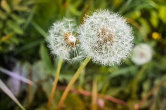 Natur im Wandel der Jahreszeiten