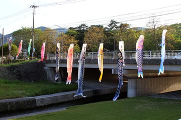 The festival of Japanese koinobori flying koi carp fish in Beppu