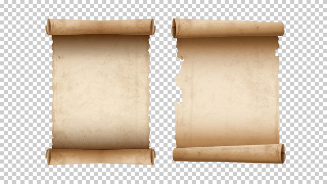 Old paper aged blank scrolls, two old parchments isolated