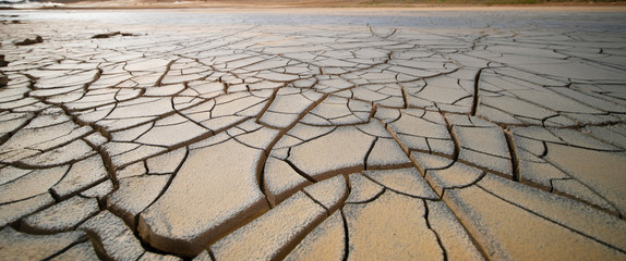 Dried land in the desert. Cracked soil crust