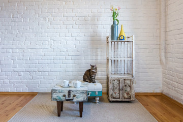 table, chairs, shelves on the background of a white brick wall in vintage loft interior with cat