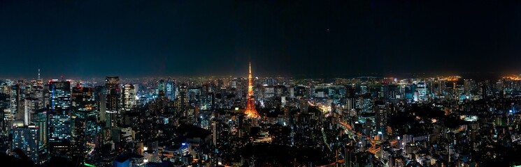 Spoed Fotobehang Tokio The most beautiful Viewpoint Tokyo tower in tokyo city ,japan.