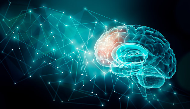 Human brain activity with plexus lines.. External cerebral connections in the frontal lobe. Communication, psychology, artificial intelligence or AI, cognition concepts illustration with copy space.