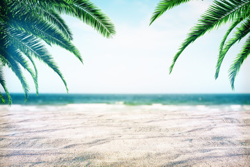 Beautiful beach background with palms Wall mural