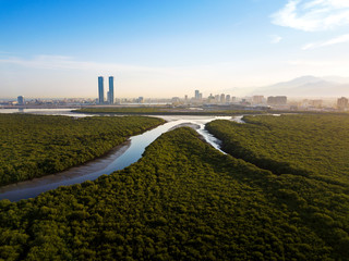 Panoramic view of Ras al Khaimah over mangrove forest in the UAE