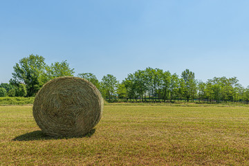 Summer landscape of a meadow with a bale of hay