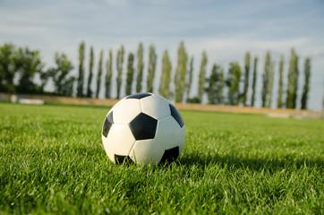 Closeup soccer ball on soccer field, sunny day