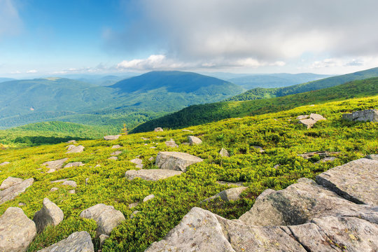 rocks on the grassy hillside. beautiful landscape on sunny summer morning. low fluffy clouds hang on the mountain top