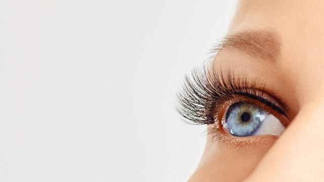 Female eye with extreme long false eye lashes. Eyelash extensions, make-up, cosmetics, beauty