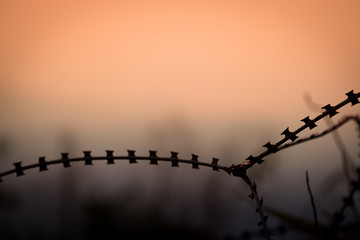 Barbed wire fence and Light of Hope. Barbed wire fence with Twilight sky to feel Silent and lonely and want freedom
