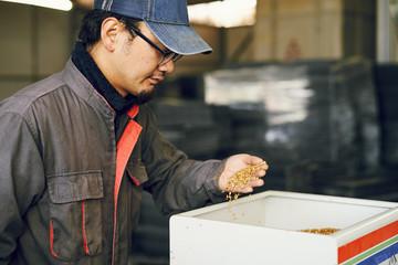 稲の種まきをする農家さん