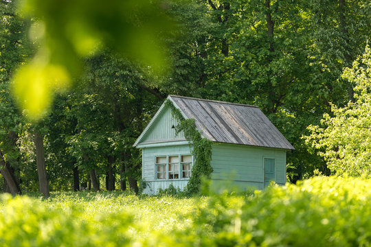 A small house on the edge of the forest. Summer landscape with a small rural blue house.