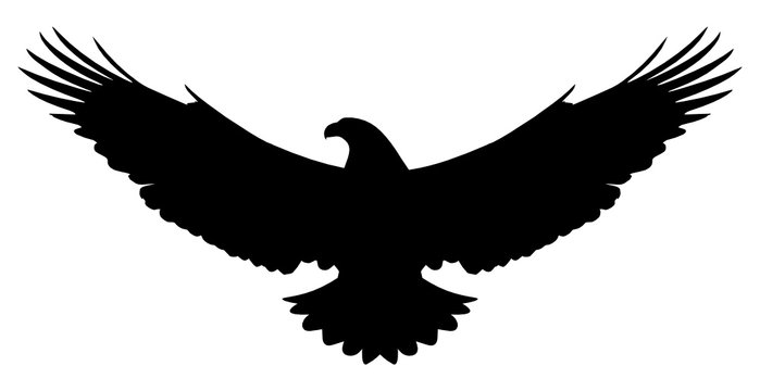 Vector silhouette of a flying american eagle isolated on white background