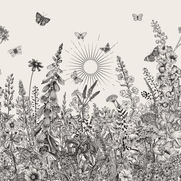 Lovely Garden. Border. Vintage illustration. Spring and summer garden flowers. Black and white