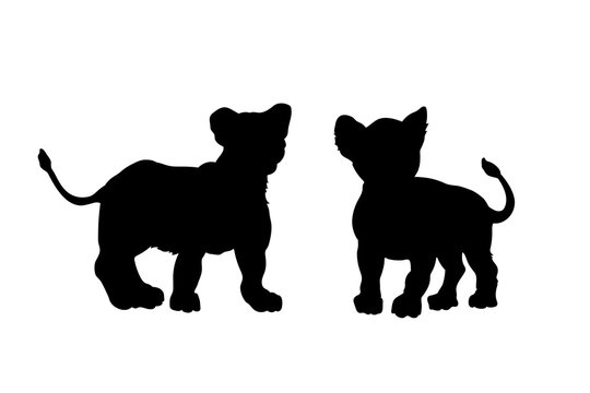 Black silhouette of young lions on white background. Lionet image. Isolated icon of wild cat. African animals