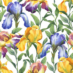 watercolor seamless pattern with purple, yellow and blue iris flower and green leaves