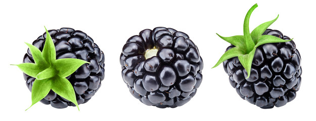 Ripe blackberry collection isolated on white background