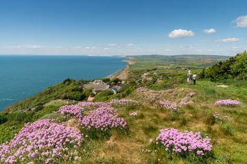 Summer on the Isle of Wight, England