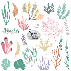 Vector collection of colorful underwater ocean coral reef plants