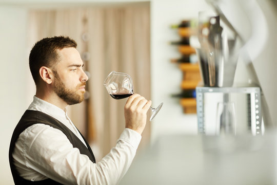 Side view portrait of professional sommelier holding wine glass during tasting session, copy space