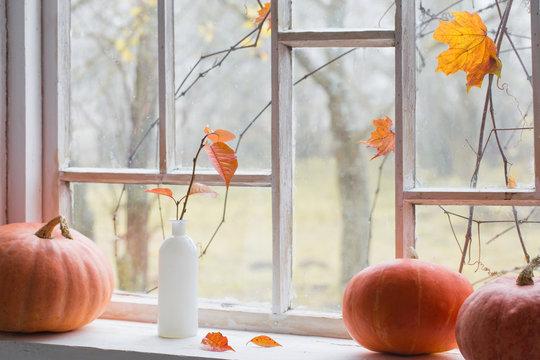 orange pumpkin on windowsill