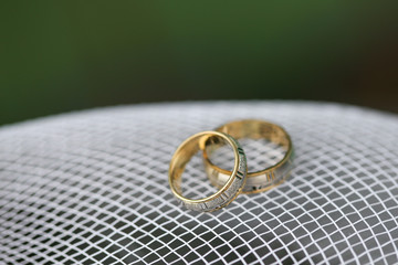 Golden wedding rings on the white mesh with green background