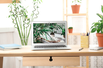 Houseplants and laptop on table in office interior