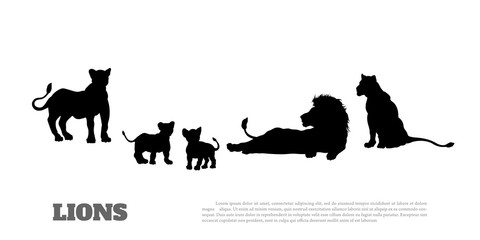 Black silhouette of  lion pride on white background. Isolated scene of savannah wildlife.   Landscape of wild african animals