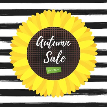 Autumn sale vector banner or poster gradient flat style design vector illustration with text AUTUMN SALE, sunflower and isolated on fun background.